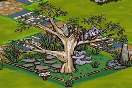 ZooMumba Koala