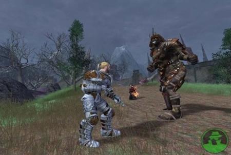 Vanguard: Saga of Heroes Kampfszene